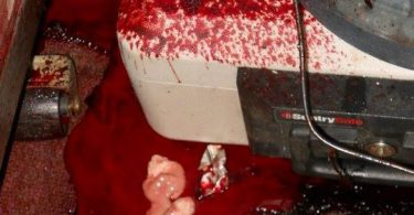 the-shocking-reality-of-crime-scene-cleanup-10-375x195 NSFW: The Shocking Reality of Crime Scene Cleanup