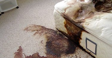 the-shocking-reality-of-crime-scene-cleanup-2-375x195 NSFW: The Shocking Reality of Crime Scene Cleanup