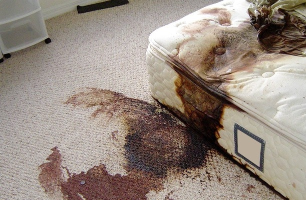 the-shocking-reality-of-crime-scene-cleanup-2 NSFW: The Shocking Reality of Crime Scene Cleanup