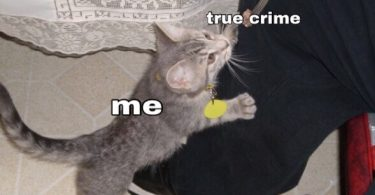 true-crime-meme-41-375x195 72 Most Hilarious Memes Every True Crime Junkie Can Relate To
